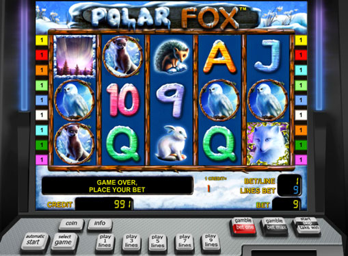 Polar Fox gioca allo slot online